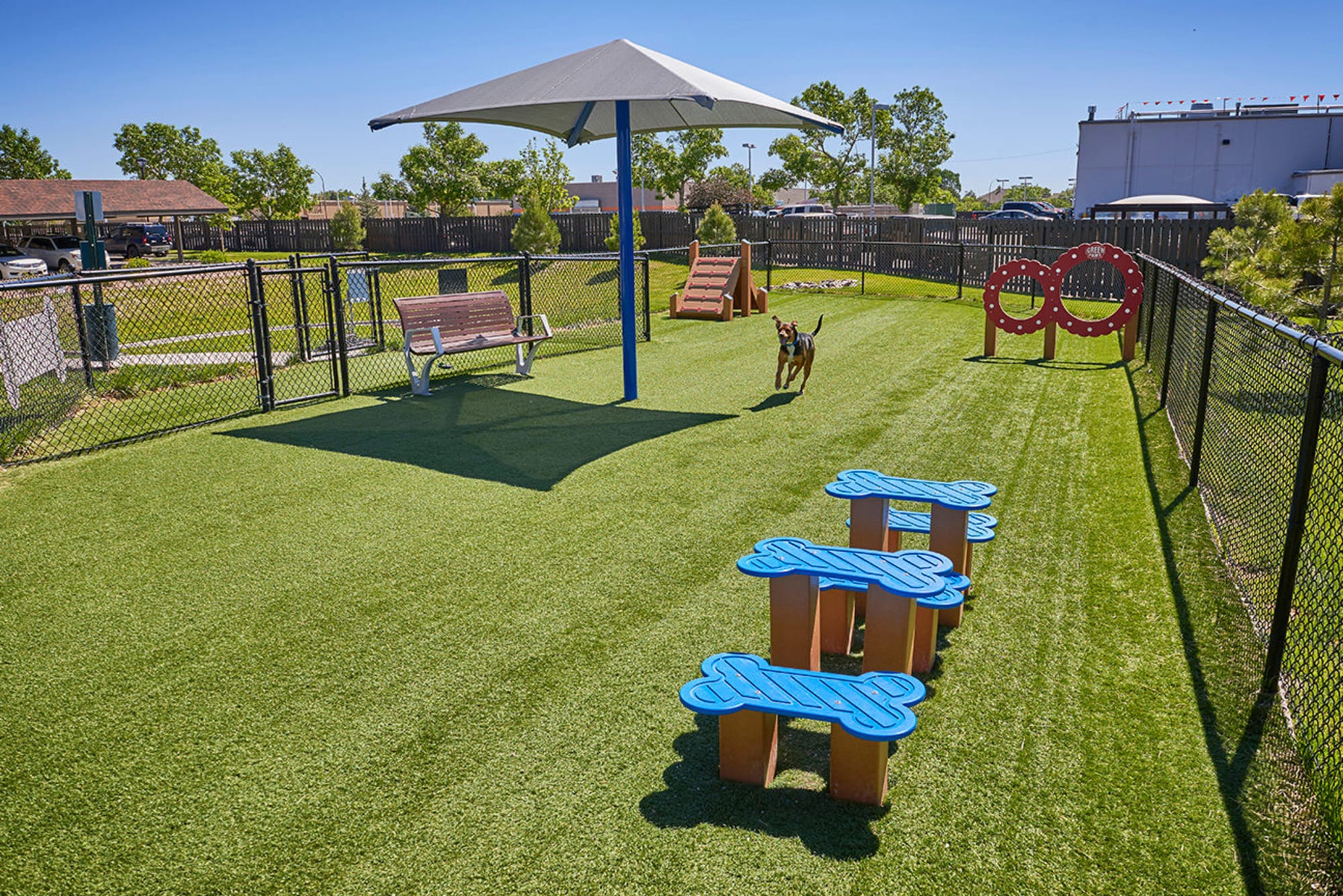 The groomed grass at the dog park at M2 Apartments in Denver, Colorado