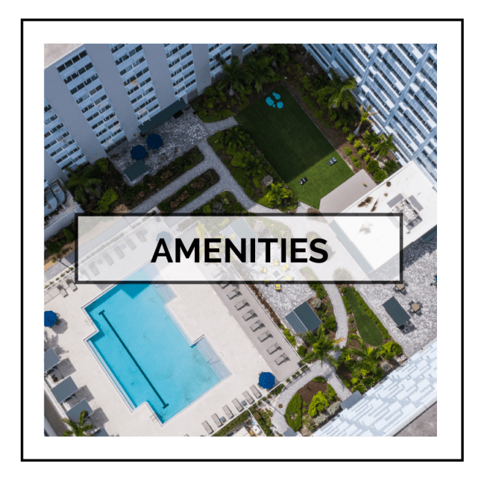 Link to amenities at The Wayland in St Petersburg, Florida