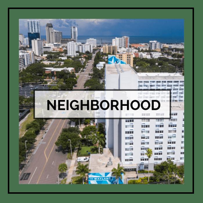 Link to neighborhood info for The Wayland in St Petersburg, Florida