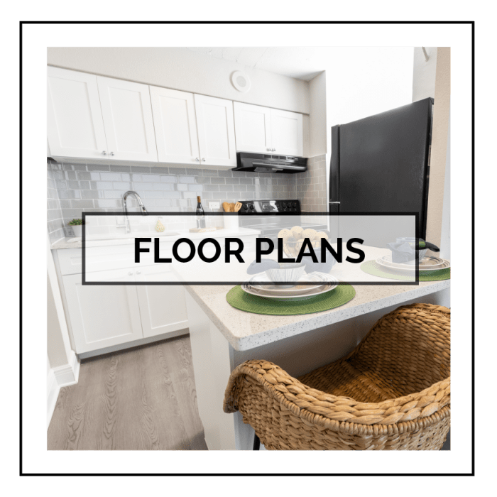 Link to floor plans at The Wayland in St Petersburg, Florida