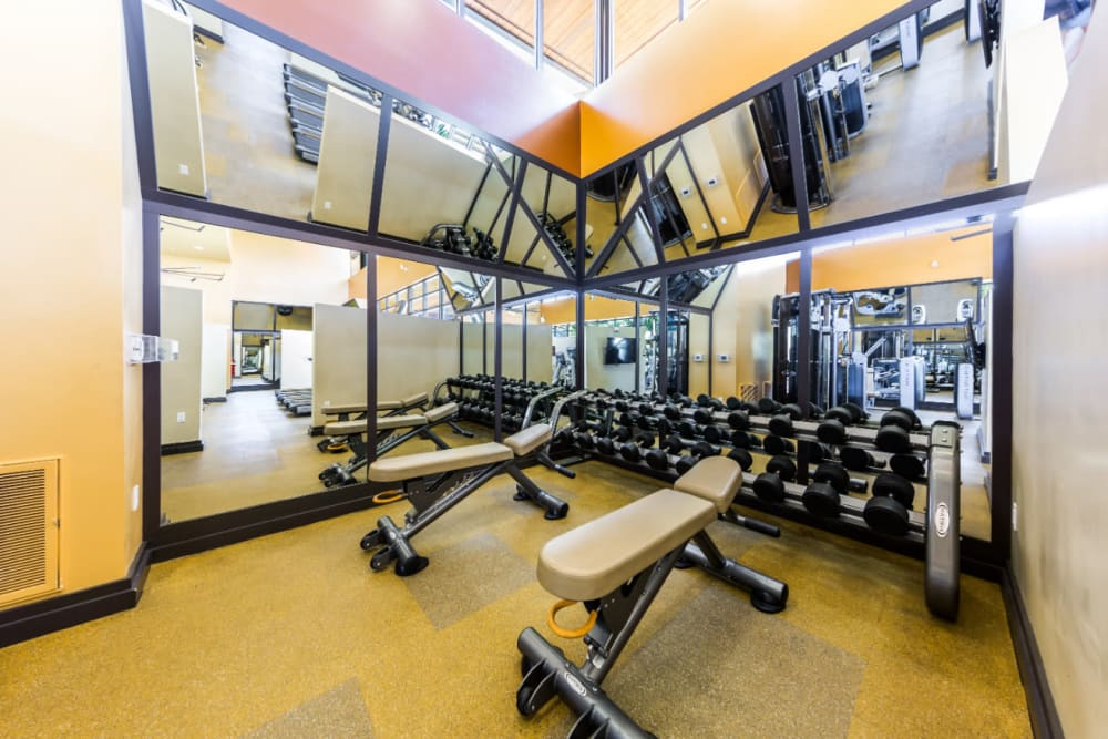 Free weights and benches in the fitness center at Marquis at Desert Ridge in Phoenix, Arizona