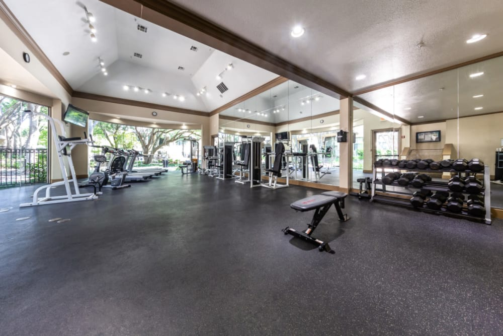 Spacious fitness room with cardio machines and free weights at Marquis at Waterview in Richardson, Texas