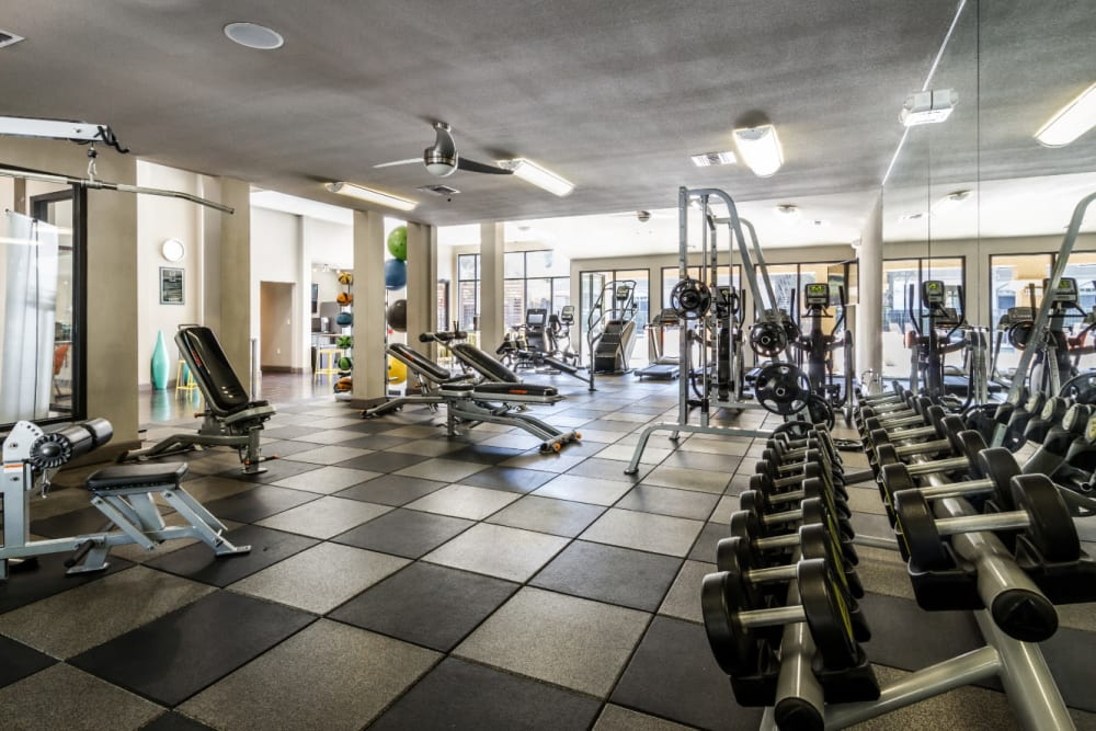 Indoor fitness center with free weights and multiple machines at Marquis at Barton Trails in Austin, Texas
