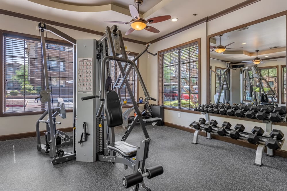 Fitness room with multiple exercise machine and free weights rack at Marquis at Sonoran Preserve in Phoenix, Arizona