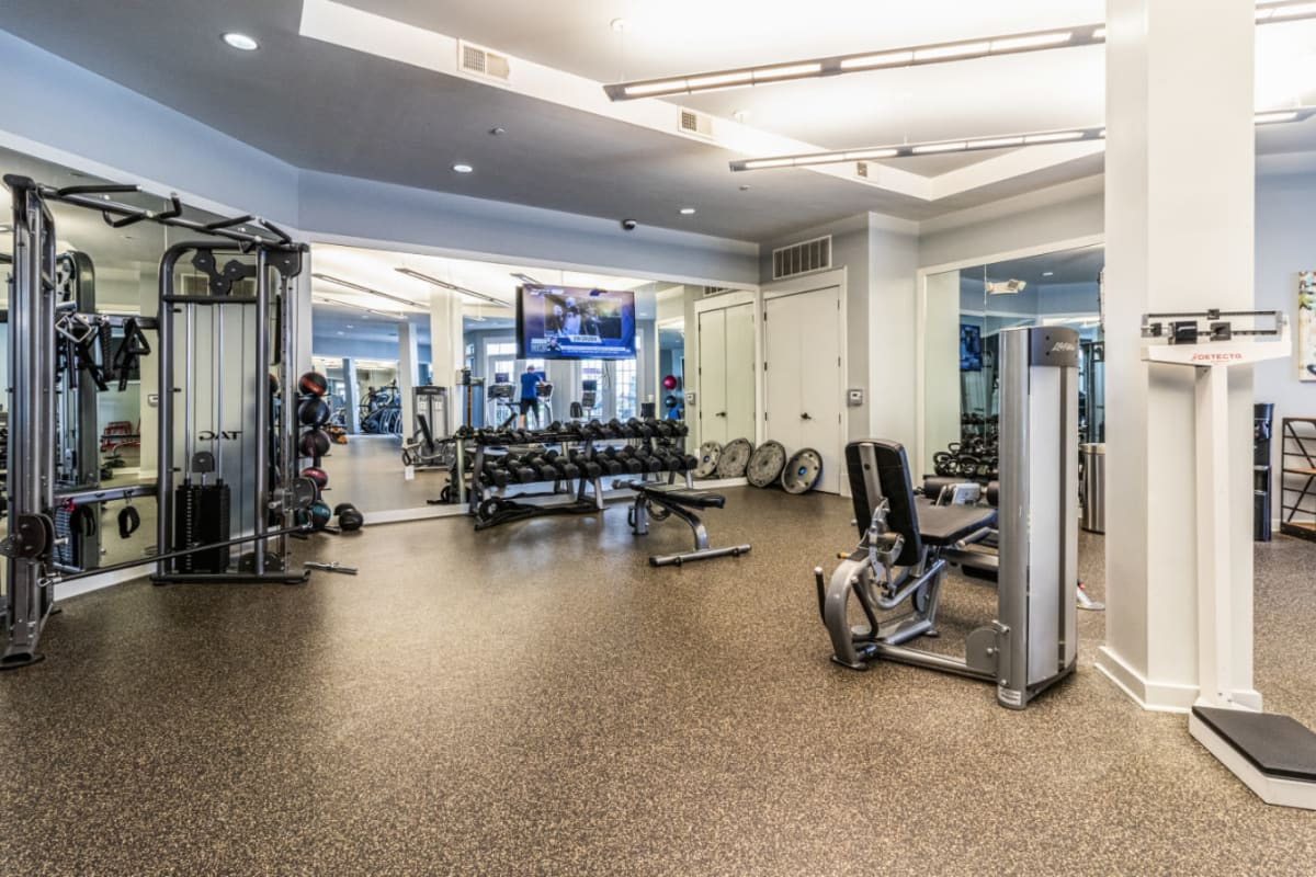 Free weight section with television monitor in fitness room at Marquis at Buckhead in Atlanta, Georgia