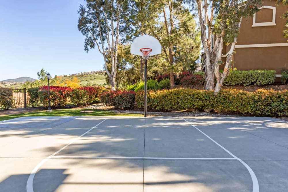 Onsite basketball court at Sofi Highlands in San Diego, California