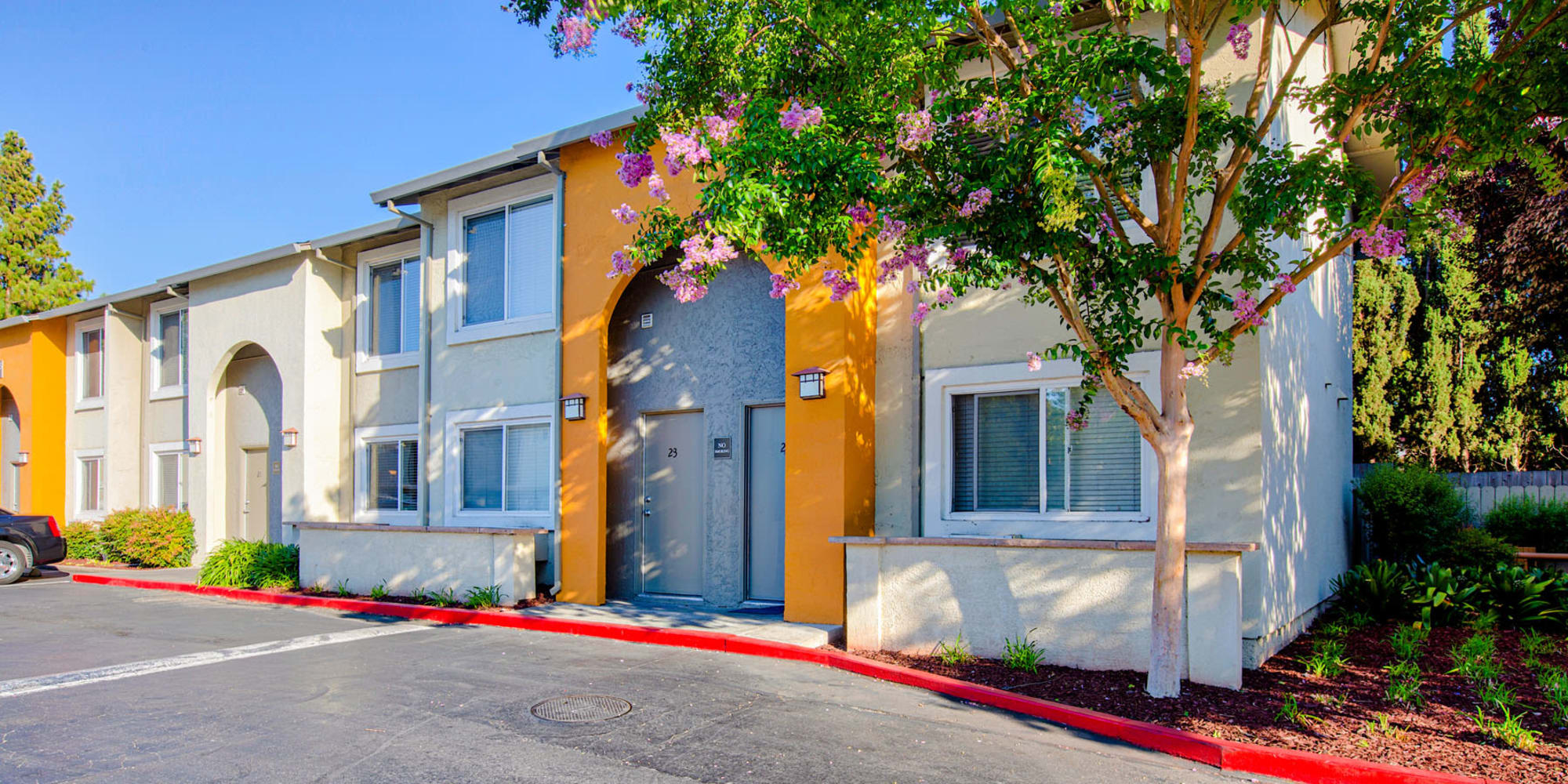 Colorful resident buildings and mature trees at Pleasanton Place Apartment Homes in Pleasanton, California