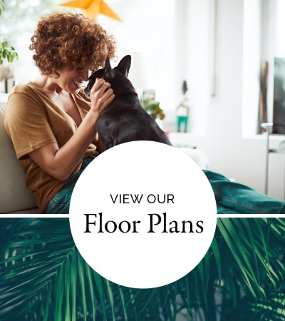 View floor plans at Doral View Apartments in Miami, Florida