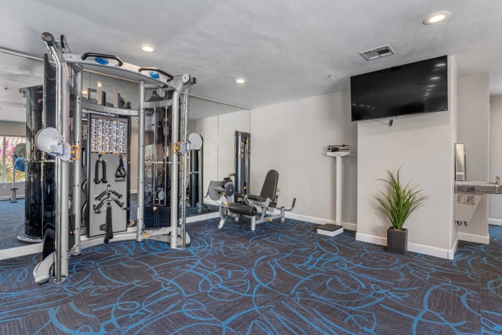 Multi-workout machine, standard stand-up scale, and large TV in fitness room at Alante at the Islands in Chandler, Arizona