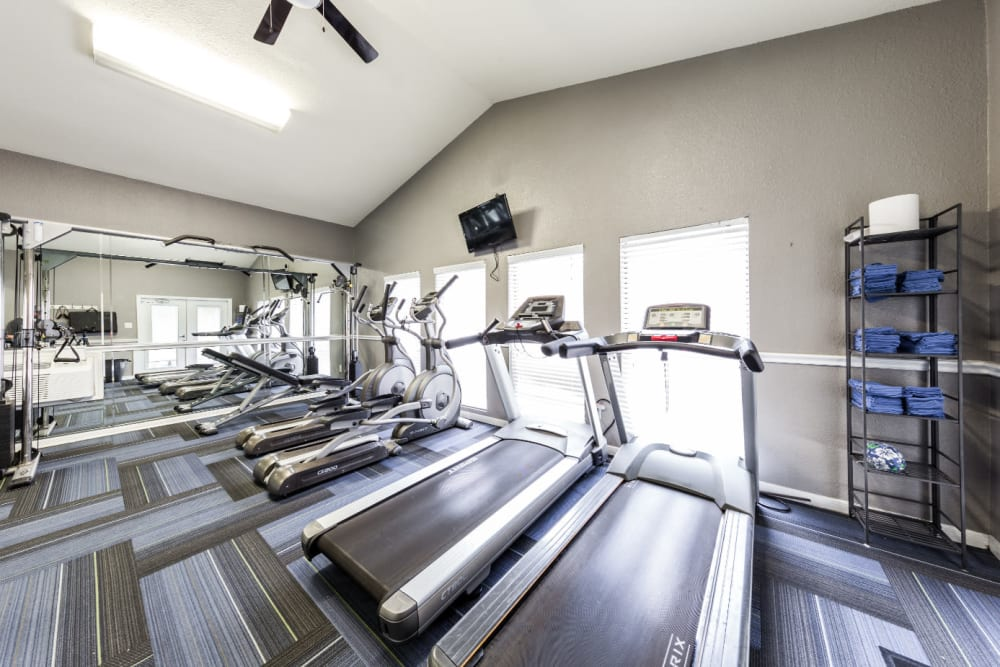 Cardio machines facing windows with wall-mounted monitor above windows at Austin Midtown in Austin, Texas