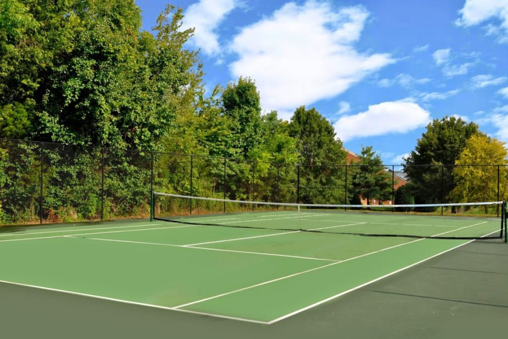 A beautiful tennis court surrounded by trees at Goldelm at Metropolitan in Knoxville, Tennessee