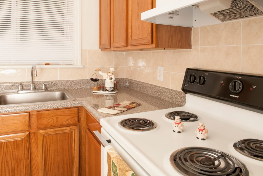 Kitchen with salt and pepper shakers at Alpine Court East Apartments in Lindenwold, New Jersey