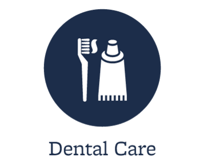 Pet dental care offered in Clive