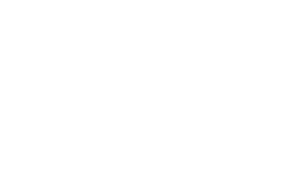 Parsons Group Inc.
