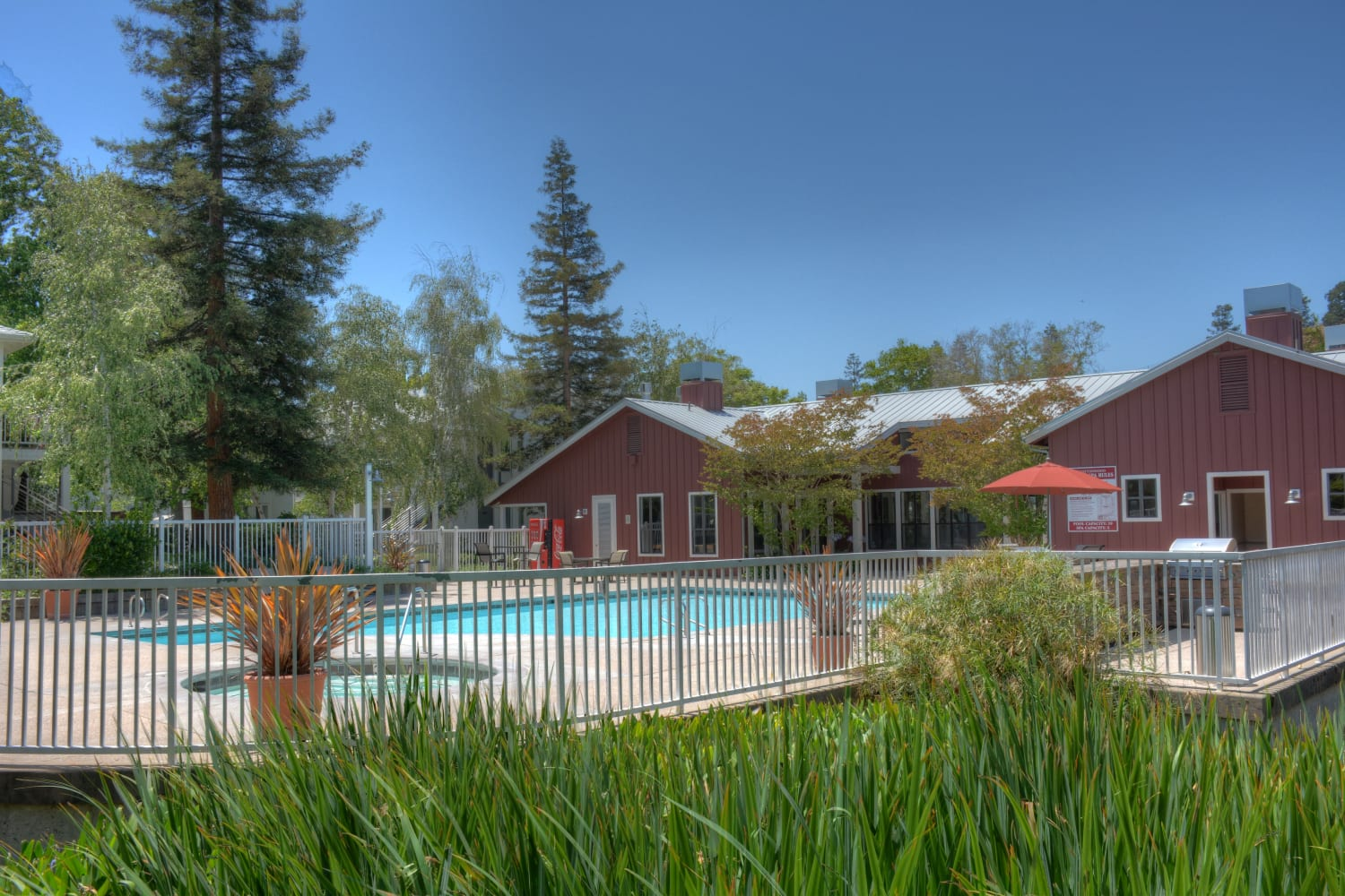 Enjoy swimming under the sun at Cotton Wood Apartments in Dublin, California
