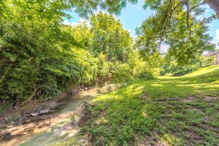 Beautiful greenery next to Wooded Creek