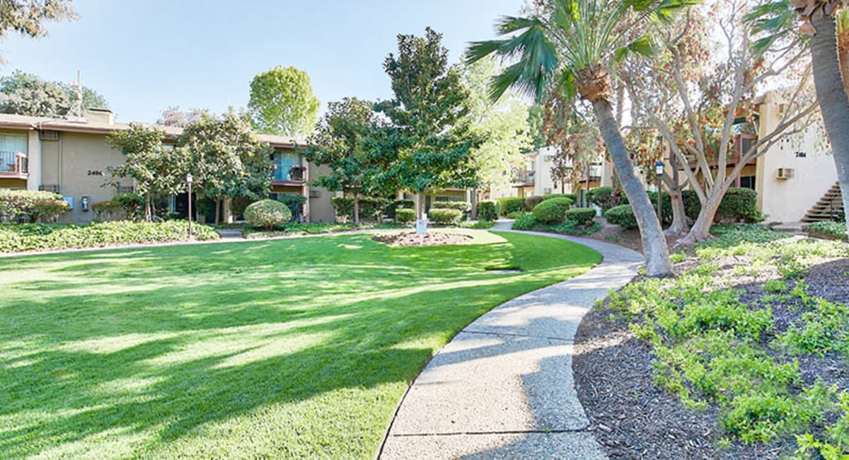 Beautifully manicured landscaping at Mediterranean Village Apartments in Costa Mesa, California