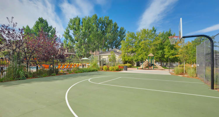 Basketball court at Environs Residential Rental Community in Westminster, Colorado
