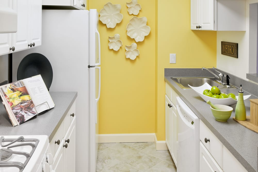 Colorful accent wall in kitchen at Parkside Place in Cambridge, Massachusetts