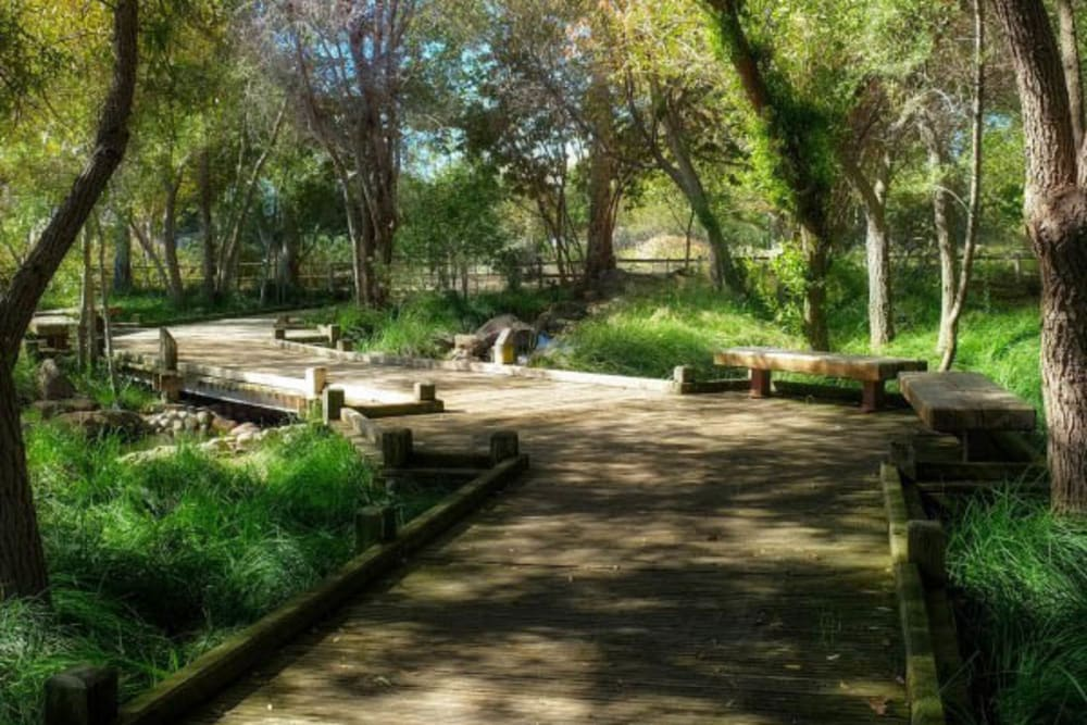 A walking path near Merrill Gardens at Campbell in Campbell, California