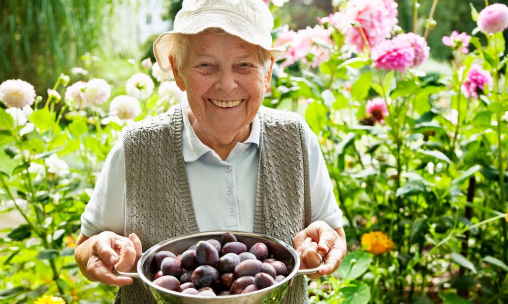 Senior woman smiling and holding a bowl of plums at The Phoenix at Estero in Estero, Florida