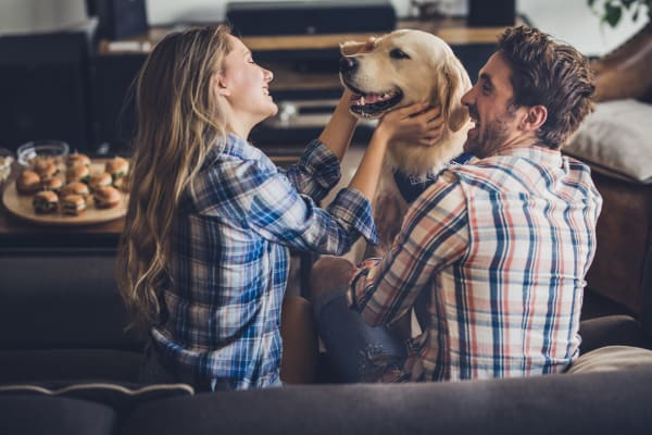 Young couple playing with their dog at 23Hundred at Ridgeview home in Plano, Texas