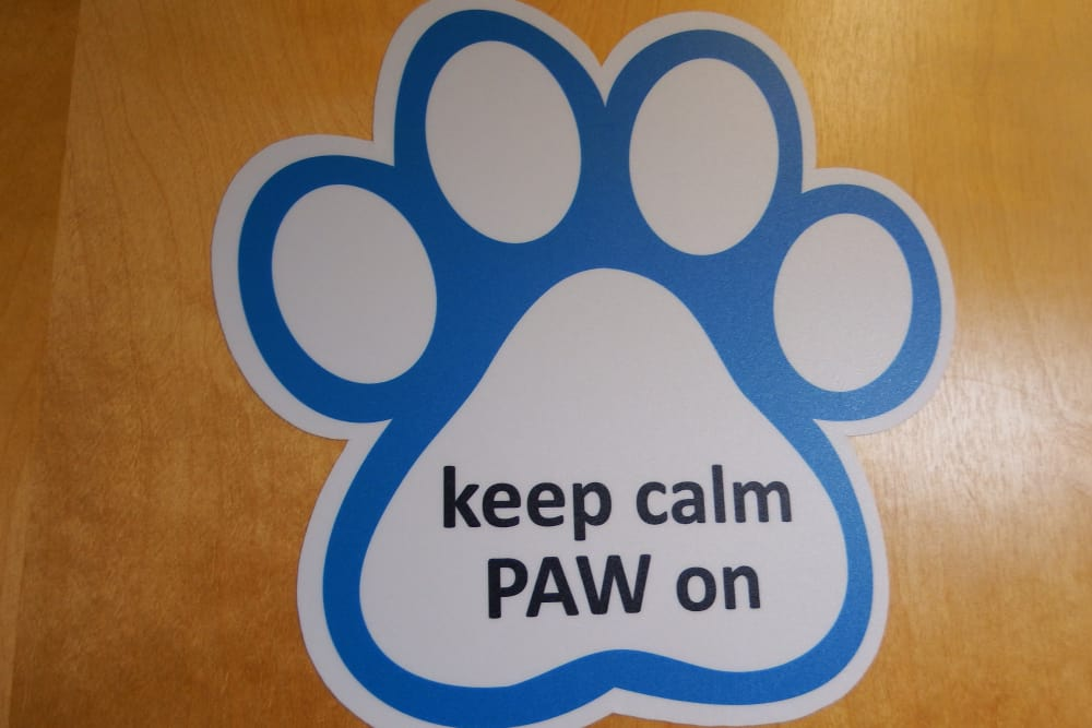 Paw sign at Angeles Clinic For Animals in Port Angeles, Washington