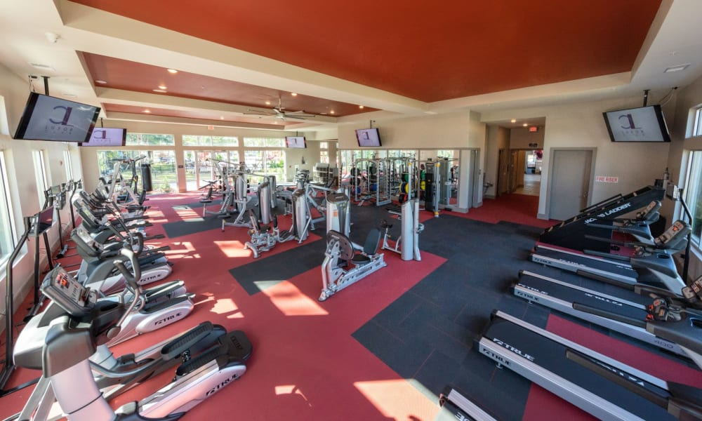Ample equipment for everyone to use in the fitness center at Luxor Club in Jacksonville, Florida