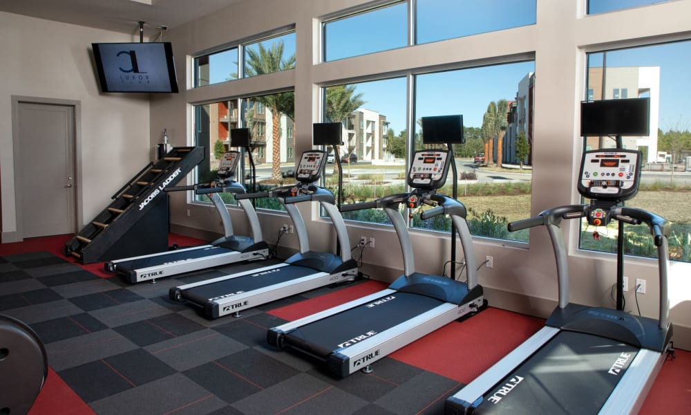 Row of treadmills looking out into the community from the fitness center at Luxor Club in Jacksonville, Florida