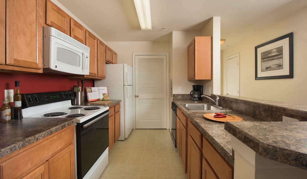 A spacious kitchen with ample cabinetry at Park Villas Apartments in Lexington Park, Maryland