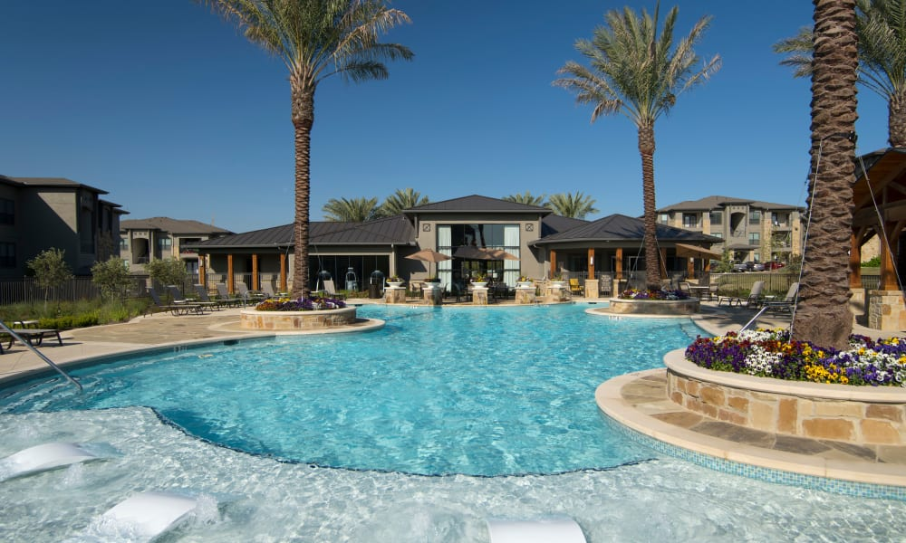 Resident pool with palm trees at Savannah Oaks in San Antonio, Texas