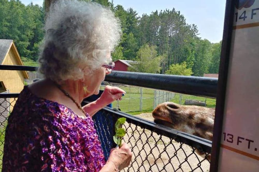 A resident feeding animals on an outing from Birch Creek in De Pere, Wisconsin