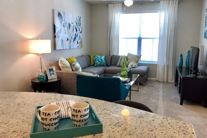 Open concept living room at Level at 401 in Raleigh, North Carolina