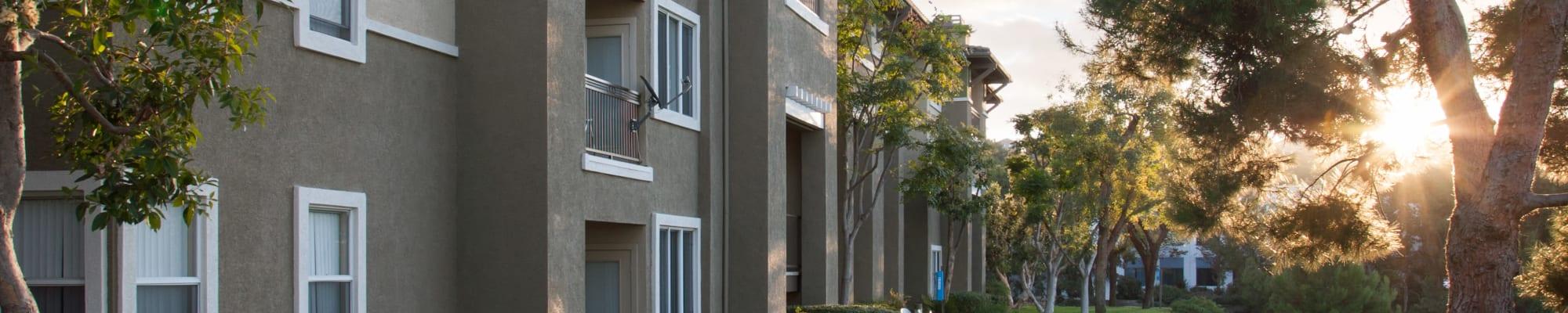 Community perks at Alicante Apartment Homes in Aliso Viejo, California