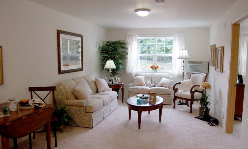 Cozy living room at Carolina Estates in Greensboro, North Carolina