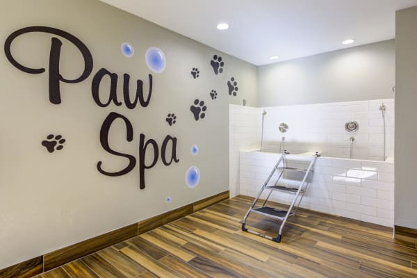 Pet Wash Room at Village Oaks in Chino Hills, CA