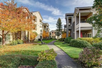 Submit an online payment at River Trail Apartments in Puyallup, Washington