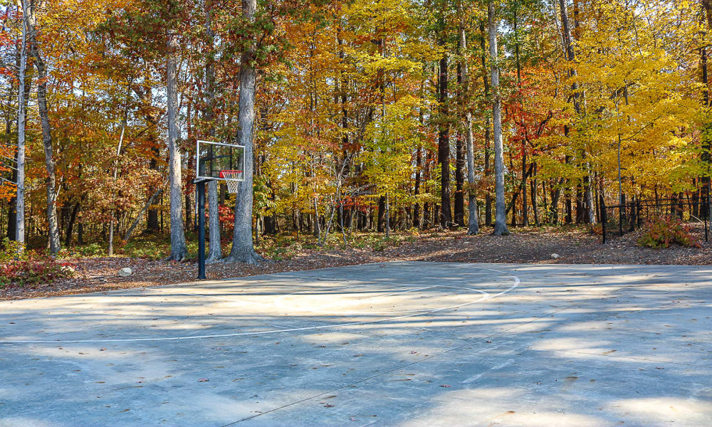 Enjoy our basketball court at Chapel Hill North