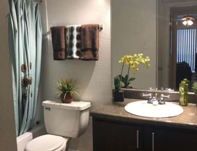 Bathroom layout at The Reserve at City Center North in Houston, Texas