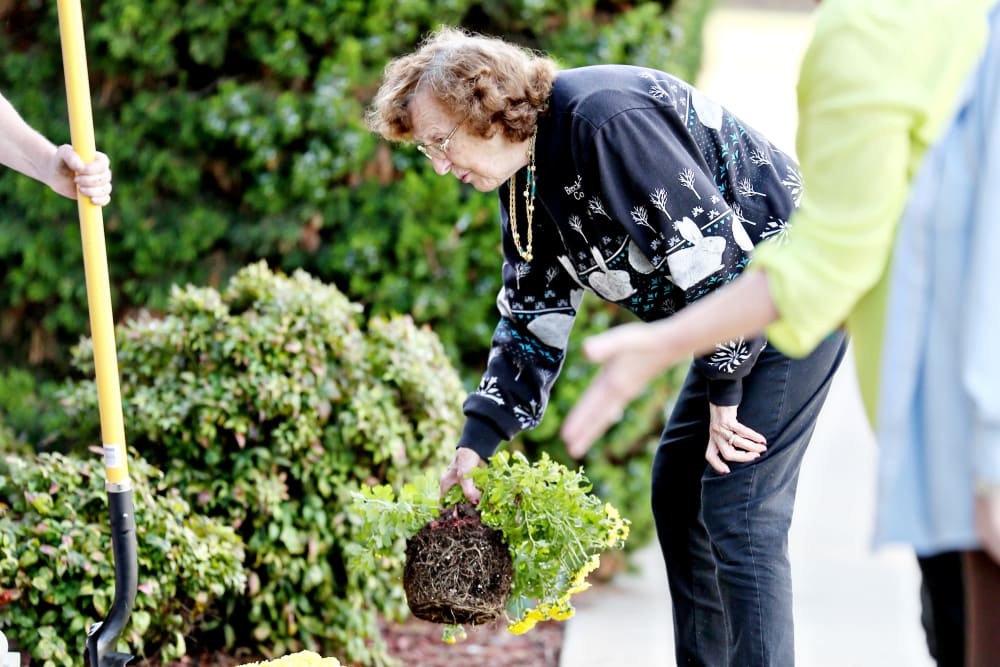 Residents gardening at Providence Assisted Living in Searcy, Arkansas.