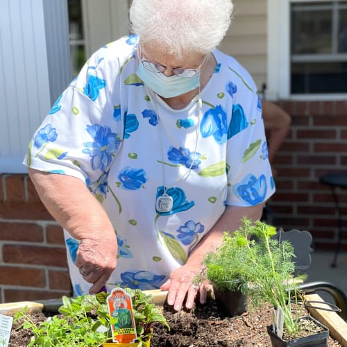 Resident gardening at Madison House in Norfolk, Nebraska