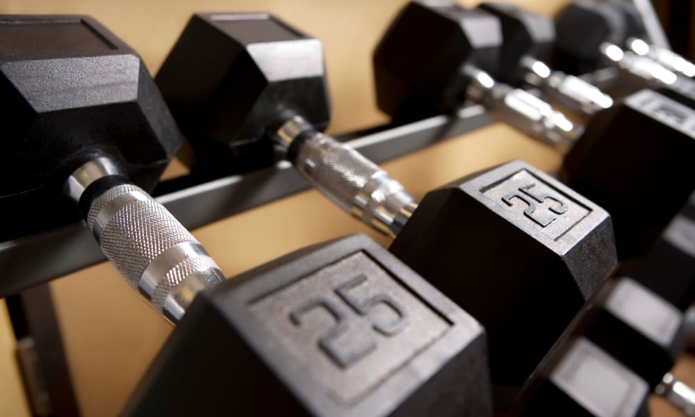 Weights in the fitness center at The Elms of Bloomfield in Bloomfield, New York