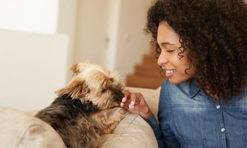 View the pet policy at Breakwater Apartments in Santa Cruz, California