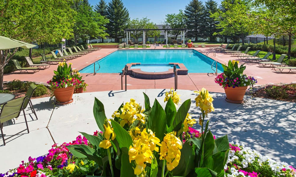 Enjoy a swim at Retreat at Cheyenne Mountain Apartments in Colorado Springs, Colorado