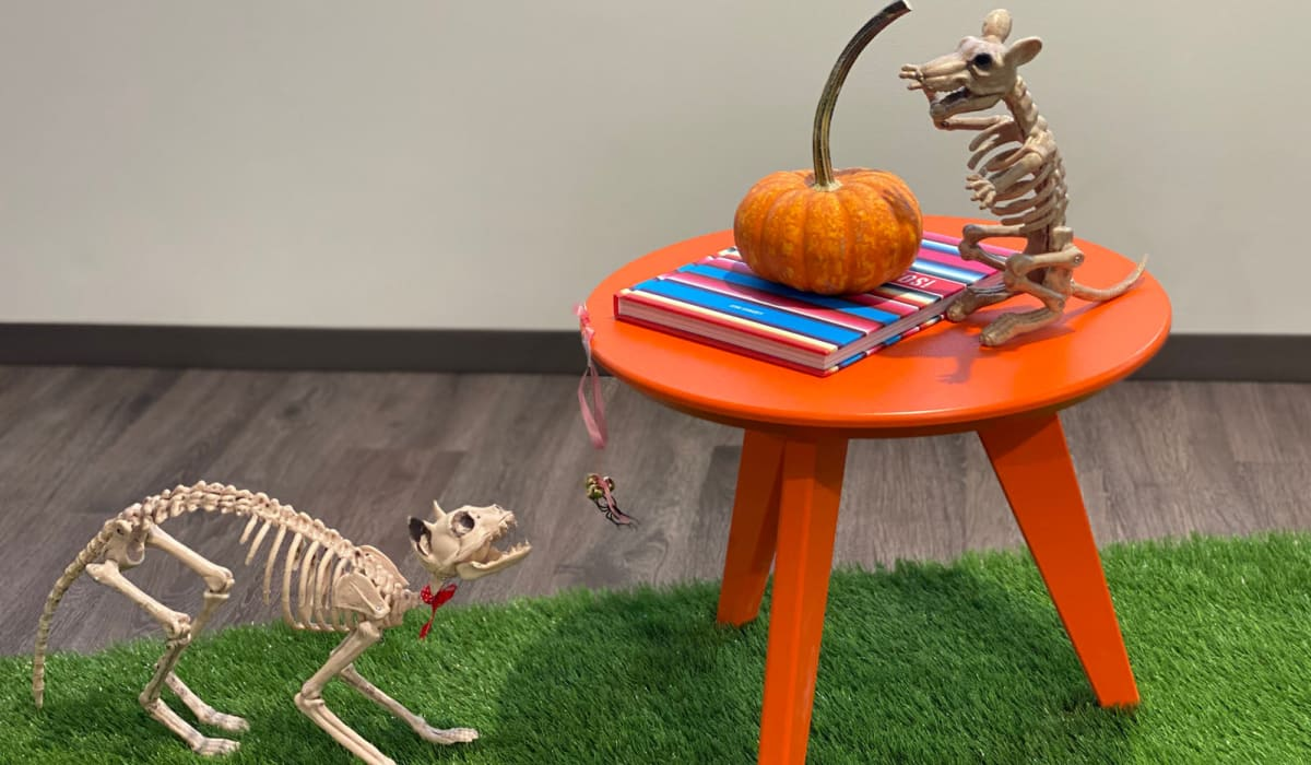 Halloween decorations at E&S Ring Management Corporation in Los Angeles, California