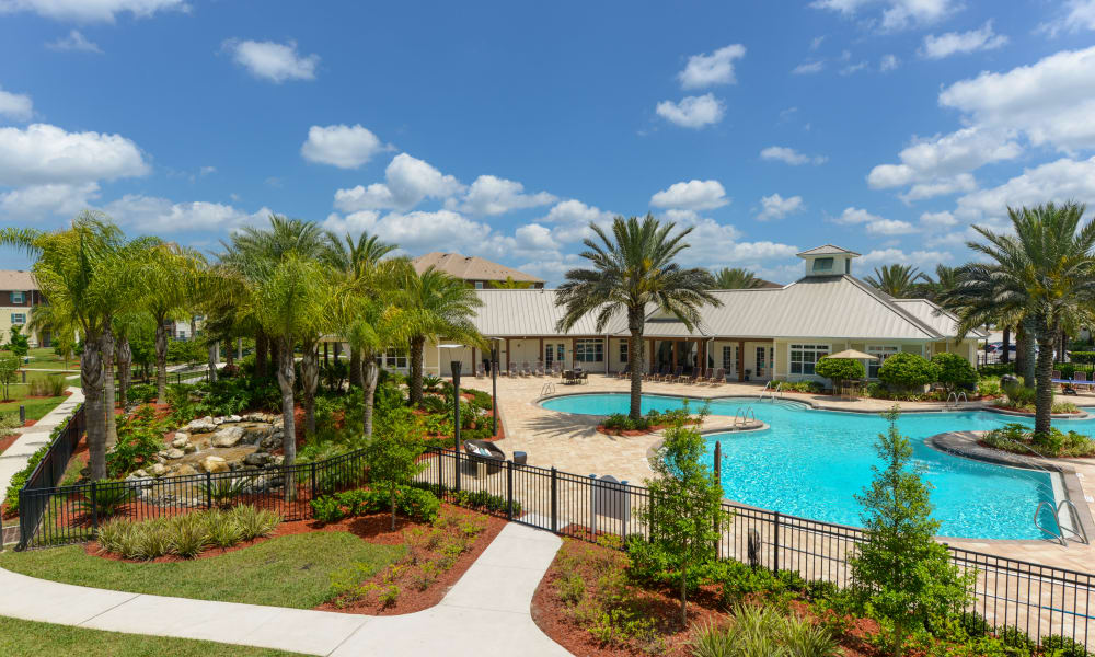 Palm trees and professionally maintained landscaping around the pool at Cabana Club and Galleria Club in Jacksonville, Florida