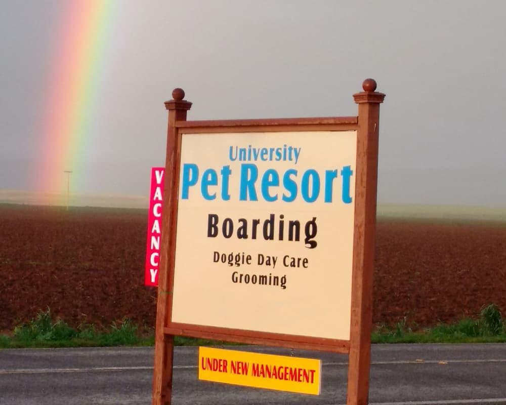 Signage outside of University Pet Resort in Merced, California