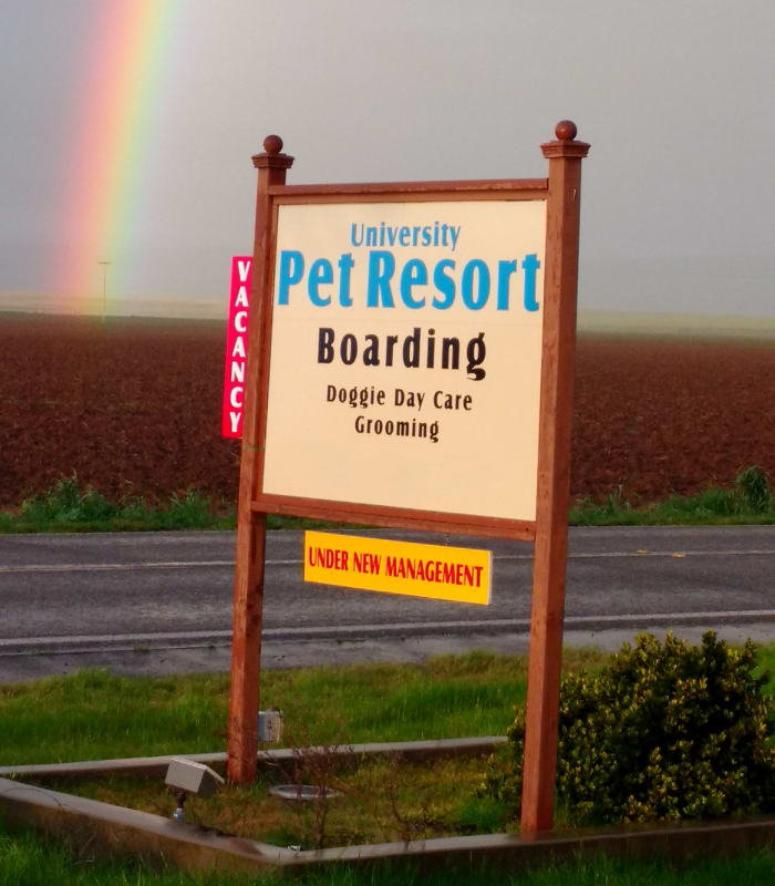 Signage at University Pet Resort in Merced, California
