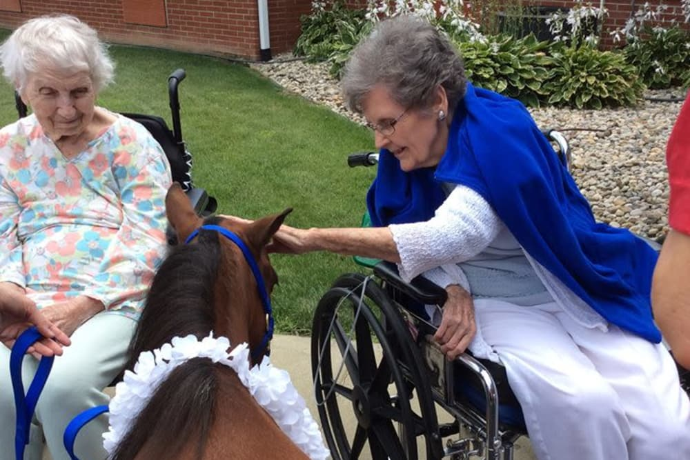 Two residents petting a therapy horse at The Willows at Bellevue in Bellevue, Ohio