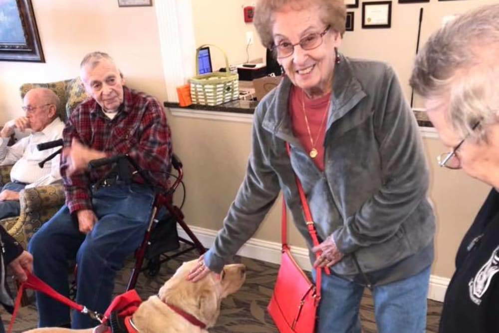 A resident petting a dog at Oak Pointe of Warrenton in Warrenton, Missouri
